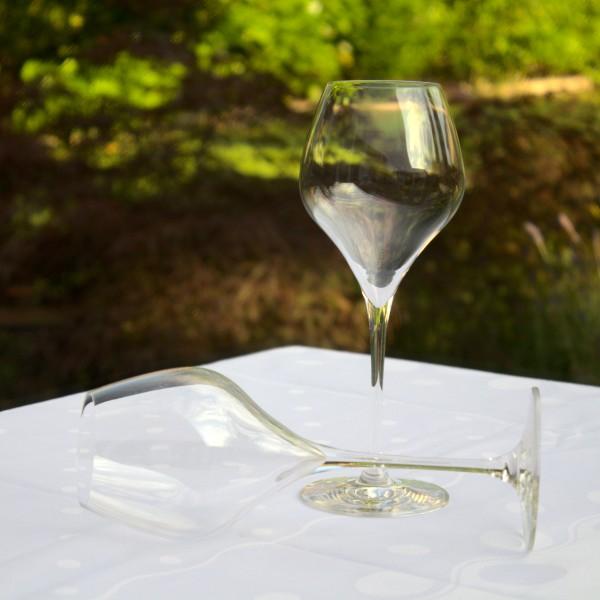 Schaumwein-Tulpe Suite Flute Set